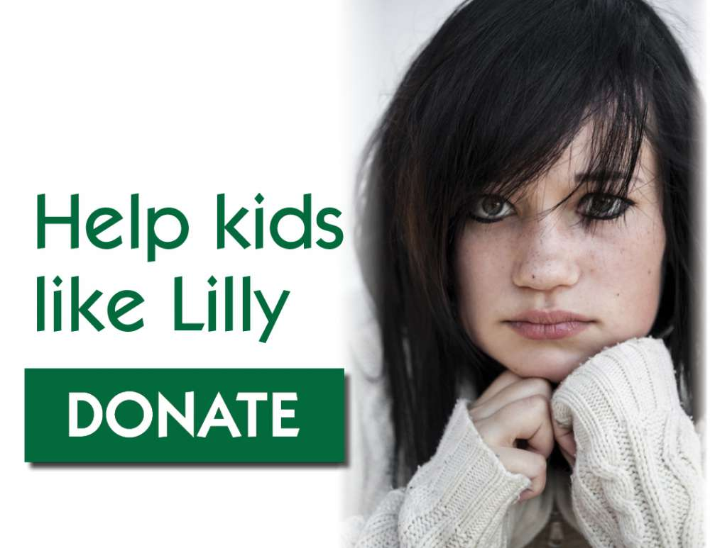 Help Kids Like Lilly Donate Button
