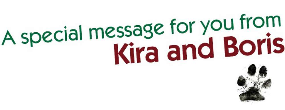 Kira And Boris Special Message
