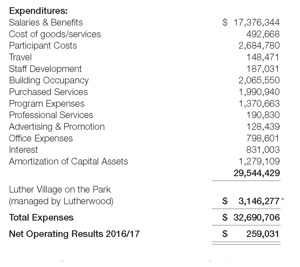 Lutherwood 2017 Revenue To Fit