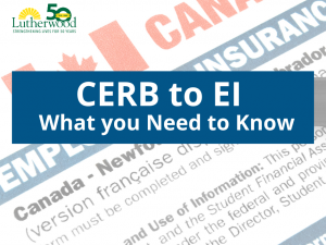 Cerb To Ei – What You Need To Know