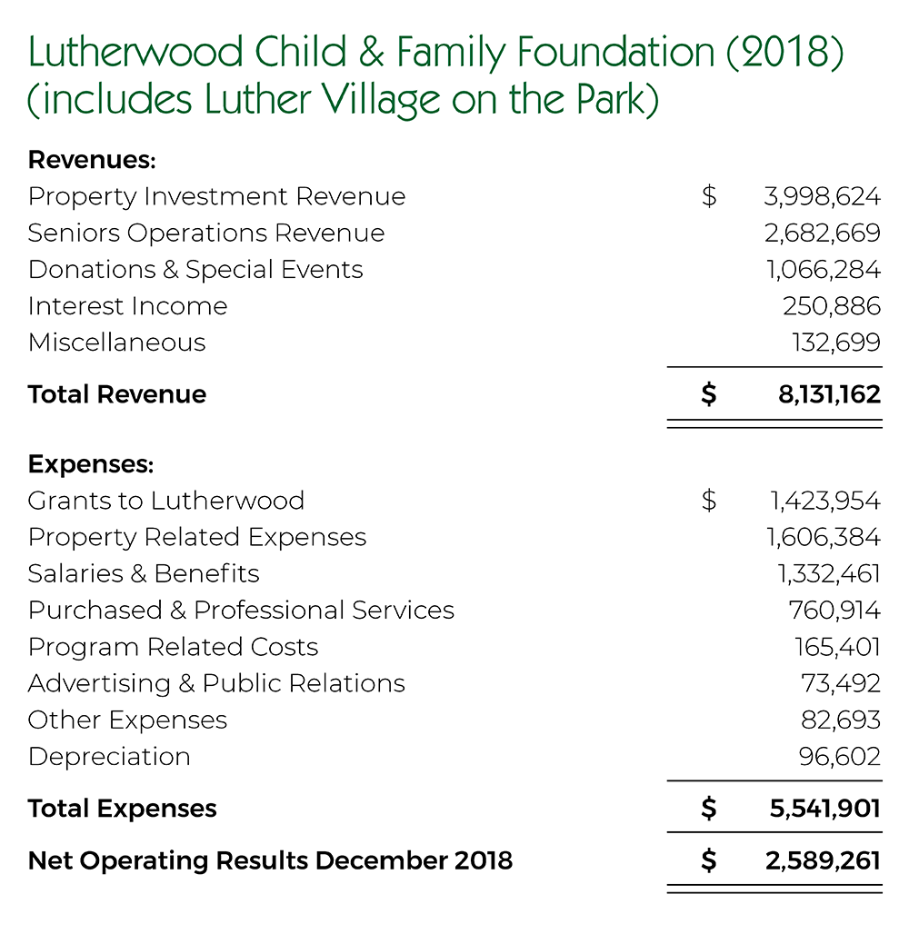 Foundation And Lvp Revenues And Expenses